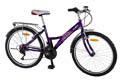 Велосипед Avanti Elite